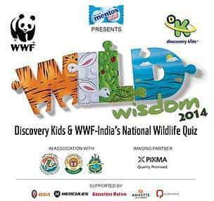wild wisdom online quiz contest for junior middle school students